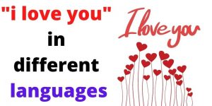 i love you in different languages